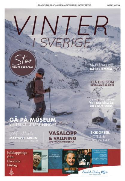 Vinter i Sverige 181219